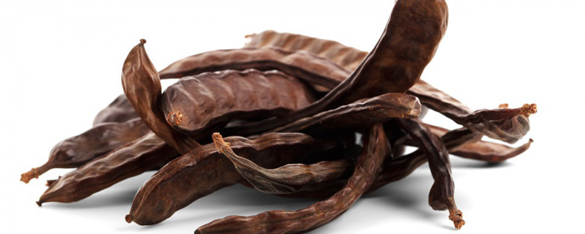 algarroba chocolate