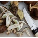 Cursos e cocina y pasteleria para principiantes en otoño